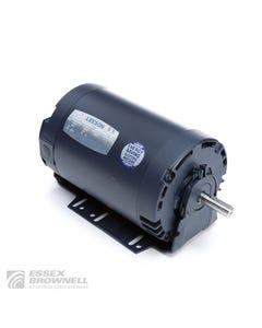 Leeson Sump Pump Motors
