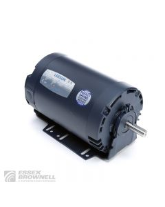 Leeson Sump Pump Motors